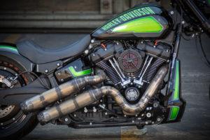Harley Davidson FXDR Custom Ricks 021