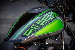 Harley Davidson FXDR Custom Ricks 033