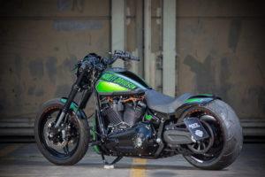 Harley Davidson FXDR Custom Ricks 044