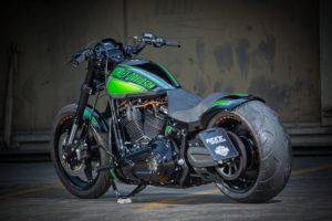 Harley Davidson FXDR Custom Ricks 045