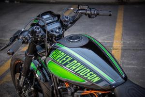 Harley Davidson FXDR Custom Ricks 053