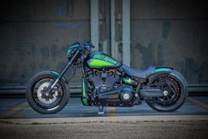 Harley Davidson FXDR Custom Ricks 054