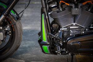 Harley Davidson FXDR Custom Ricks 060