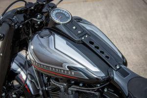 Harley Davidson Fat Boy Custom Ricks 018