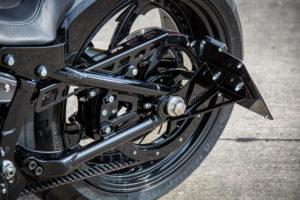 Harley Davidson Fat Boy Custom Ricks 020