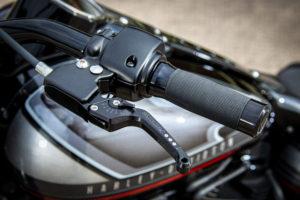 Harley Davidson Fat Boy Custom Ricks 022