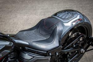 Harley Davidson Fat Boy Custom Ricks 023