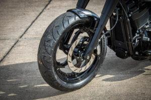 Harley Davidson Fat Boy Custom Ricks 026