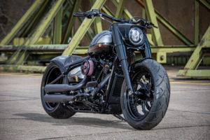 Harley Davidson Fat Boy Custom Ricks 028
