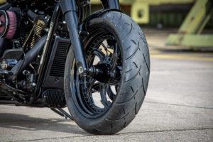Harley Davidson Fat Boy Custom Ricks 030
