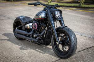 Harley Davidson Fat Boy Custom Ricks 031