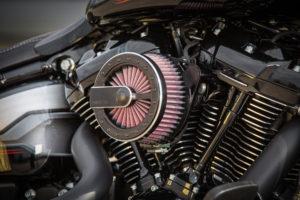 Harley Davidson Fat Boy Custom Ricks 033