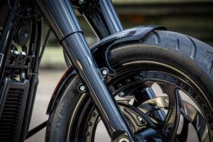 Harley Davidson Fat Boy Custom Ricks 036