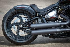 Harley Davidson Fat Boy Custom Ricks 042