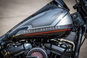 Harley Davidson Fat Boy Custom Ricks 043