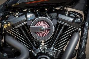 Harley Davidson Fat Boy Custom Ricks 044