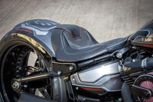 Harley Davidson Fat Boy Custom Ricks 045