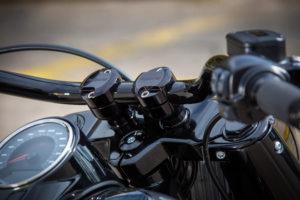 Harley Davidson Fat Boy Custom Ricks 050
