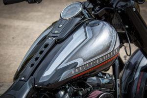 Harley Davidson Fat Boy Custom Ricks 052