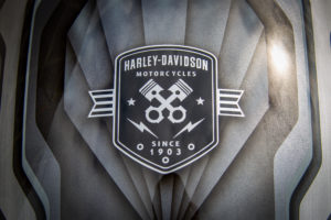 Harley Davidson Fat Boy Custom Ricks 053