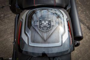Harley Davidson Fat Boy Custom Ricks 054