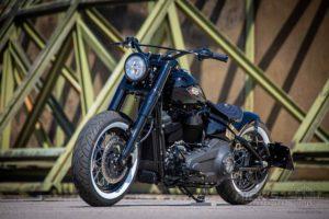 Harley Davidson M8 Softail Slim Bobber Ricks 002
