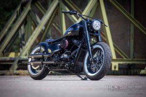 Harley Davidson M8 Softail Slim Bobber Ricks 013