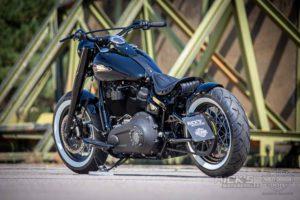 Harley Davidson M8 Softail Slim Bobber Ricks 052