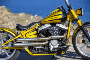 Harley Davidson Softail Slim Bobber 007