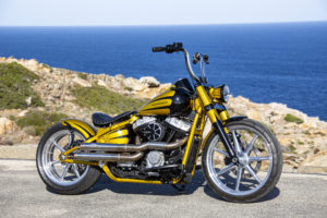 Harley Davidson Softail Slim Bobber 013
