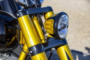 Harley Davidson Softail Slim Bobber 017
