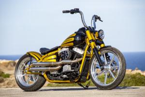 Harley Davidson Softail Slim Bobber 018