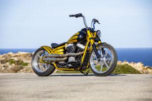 Harley Davidson Softail Slim Bobber 019