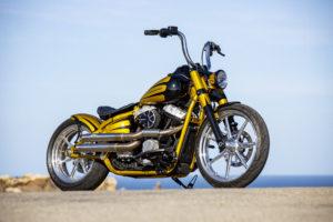 Harley Davidson Softail Slim Bobber 021
