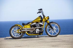 Harley Davidson Softail Slim Bobber 022