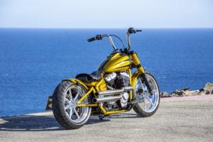 Harley Davidson Softail Slim Bobber 024 Kopie