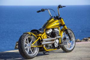 Harley Davidson Softail Slim Bobber 025 Kopie