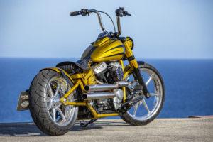 Harley Davidson Softail Slim Bobber 034 Kopie