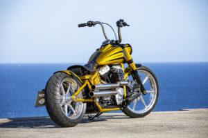Harley Davidson Softail Slim Bobber 035 Kopie