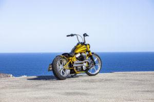 Harley Davidson Softail Slim Bobber 036 Kopie