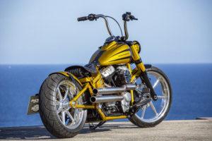 Harley Davidson Softail Slim Bobber 037 Kopie