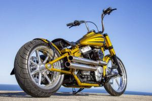 Harley Davidson Softail Slim Bobber 039 Kopie