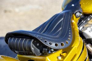 Harley Davidson Softail Slim Bobber 045