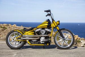 Harley Davidson Softail Slim Bobber 053