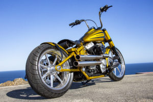 Harley Davidson Softail Slim Bobber 056