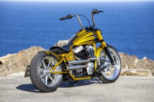 Harley Davidson Softail Slim Bobber 062 Kopie