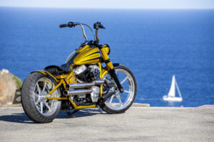 Harley Davidson Softail Slim Bobber 064 Kopie
