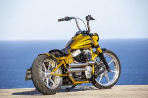 Harley Davidson Softail Slim Bobber 065 Kopie