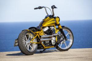 Harley Davidson Softail Slim Bobber 067 Kopie
