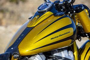 Harley Davidson Softail Slim Bobber 082